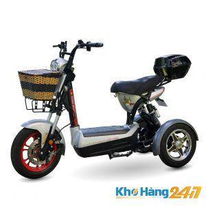 XE DAP DIEN 3 BANH TERRA MOTORS CT 01 1 300x300 - Xe máy điện 3 bánh 133 Terra Moto chế