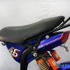 XE DAP DIEN 133S BLUERA BIKE 04 100x100 - Xe đạp điện Bluera 133S