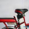 XE DAP DIEN FASHION Electric Bike 07 100x100 - Xe đạp điện Fashion Electric- PIN
