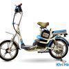 xe dap dien thanh ly dk bike 18 2 100x100 - Xe đạp điện Thanh lý DK Bike 18