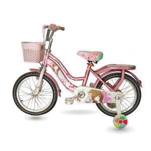 xe dap summer 01 01 300x300 - Xe đạp trẻ em Summer 16inch cũ